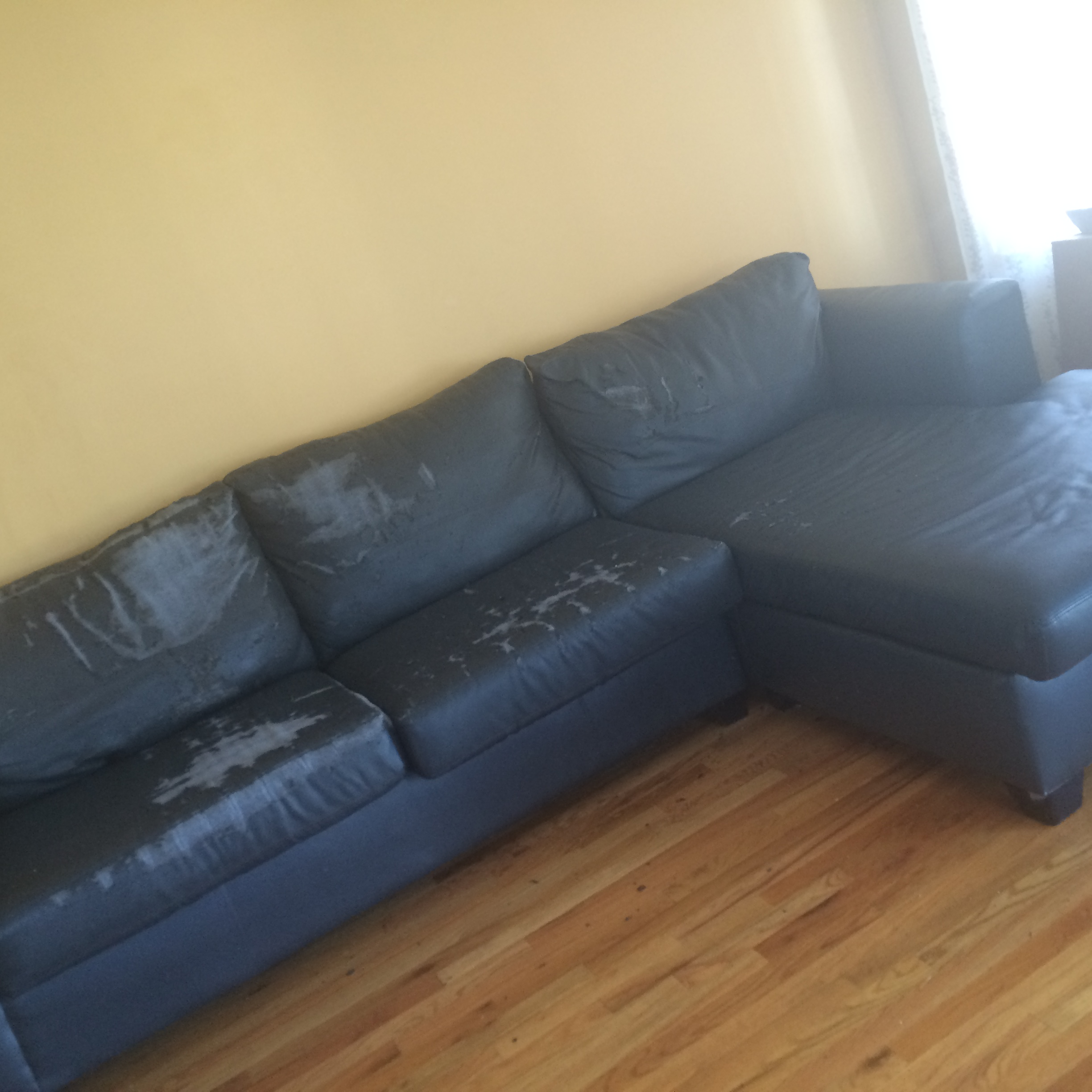 Jennifer Convertibles Inc Leather Sofa